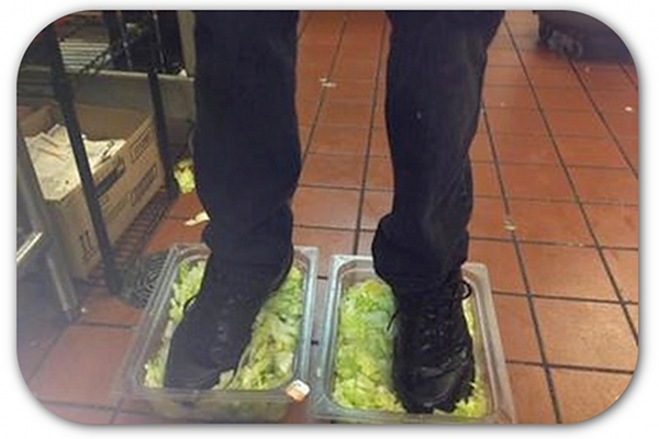 This is the lettuce you eat at Burger King.