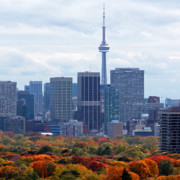 skyline-with-fall-colours